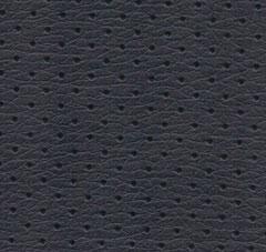 Ace-Sapphire-Insert